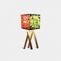 U-canvas Lamp